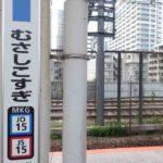 武蔵小杉駅周辺の300円ショップ(300均)まとめ