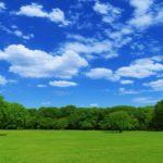 大阪府内にある入園料無料で遊べる面積の広い公園まとめ
