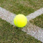全豪オープンテニスはいつ?2021年、2020年など直近5年分の開催期間まとめ